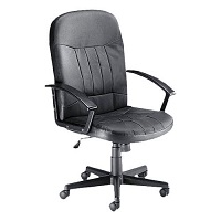High Back Manager Office Chair With Arm Leather Trexus